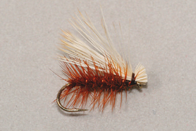 Elk Hair Caddis brown - Pintaperhot - 3932094656184 - 1